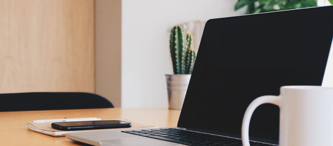 Novedades y notícias