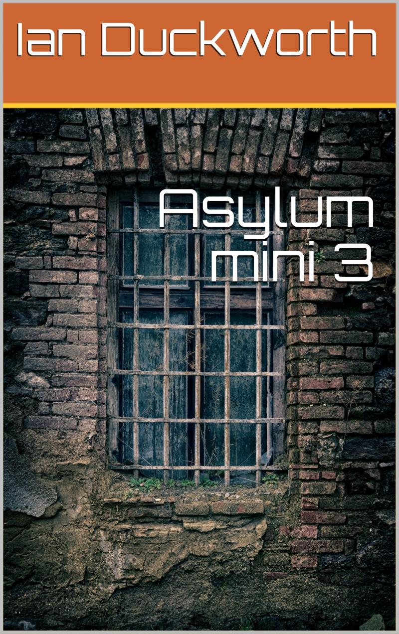 Asylum Mini 3