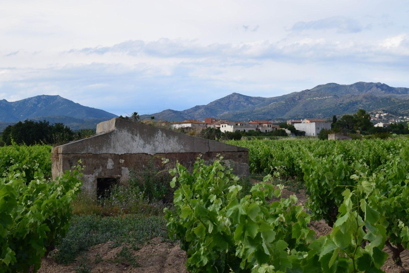 VINS&BÚNQUERS. GARRIGUELLA