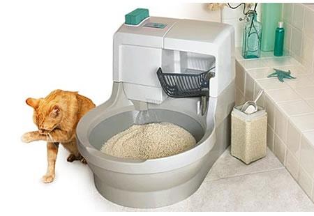 Saps si el teu gat està content amb la higiene, el tipus de sorra i ubicació del sorrall?
