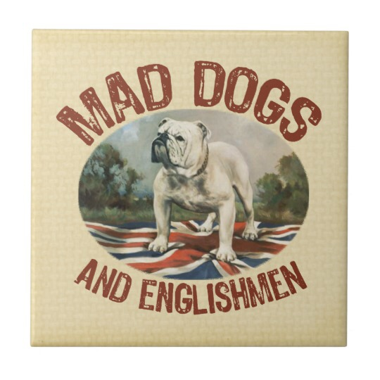 Only Mad Dogs And Englishmen Go Out In The Midday Sun!