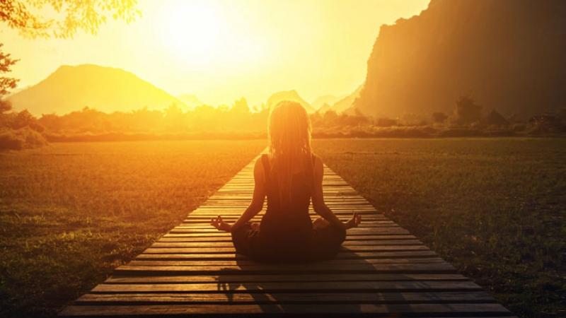 TALLER DE MINDFULNESS. Augmenta la teva felicitat i la teva efectivitat en la vida i en el treball.