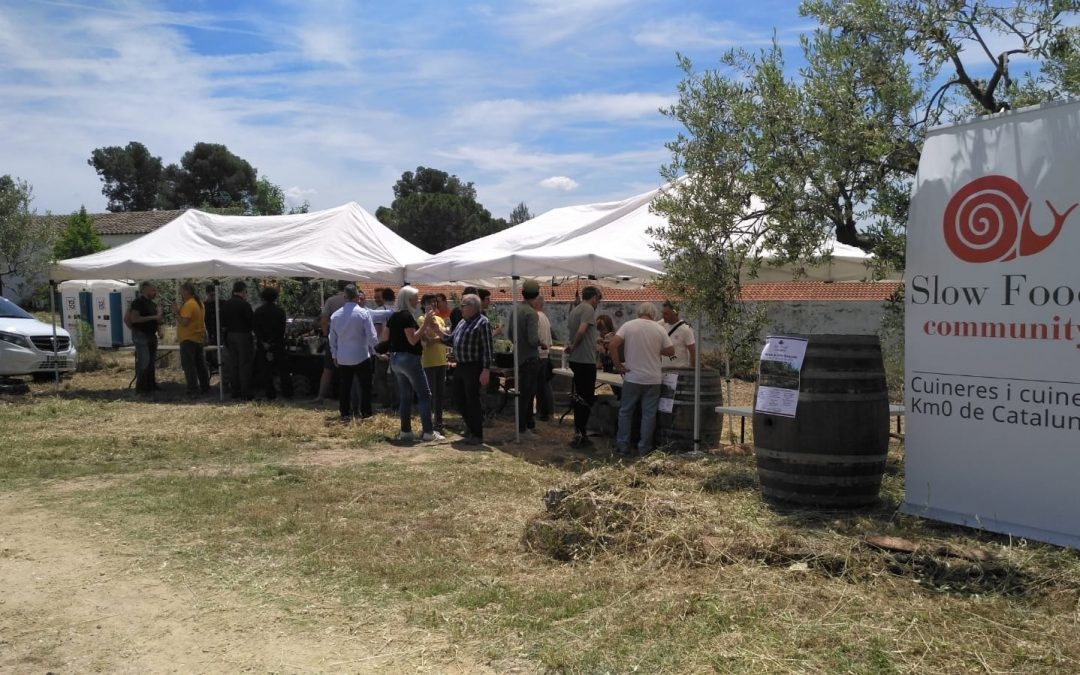 1r Mercat de Vins Naturals Slow Food-Km0, una cita a consolidar