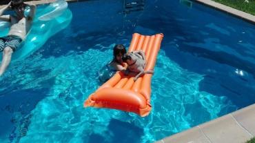 Aquest és en KIWI. Un carlino molt simpàtic que s'ho passa pipa a la piscina!
