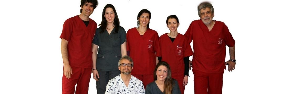 Som un equip de veterinaris, auxiliars veterinaris... especialistes en animals de companyia