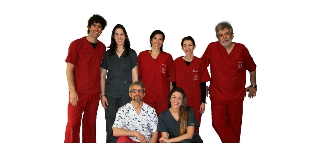 Somos un equipo de veterinarios, auxiliares veterinarios... especialistas en animales de compañía