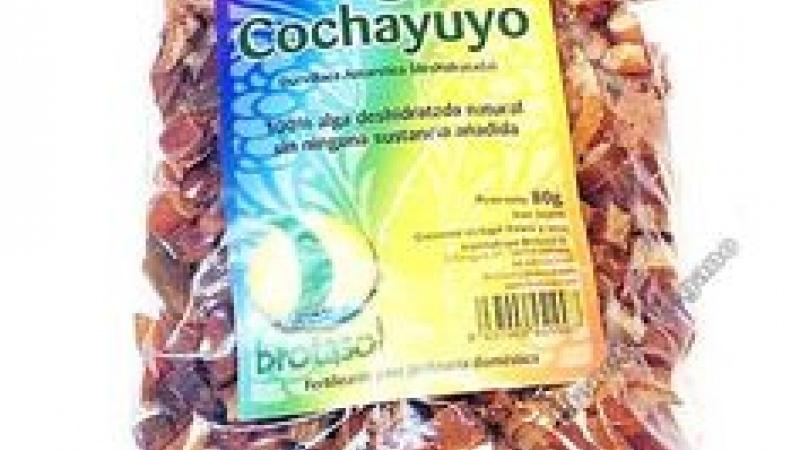 Alga Cochayuyo BROTASOL
