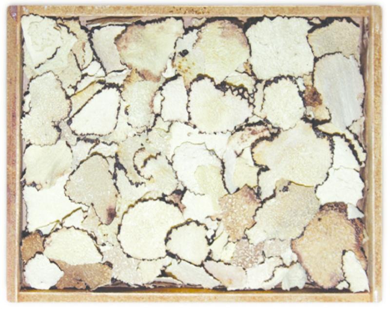 Trufa (tuber aestivum) laminada
